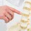 Bulging discs and herniated discs: what you need to know as a massage therapist